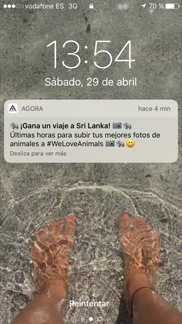 Notificaciones Push en apps