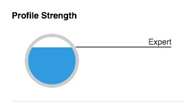 LinkedIn Profile Strengh